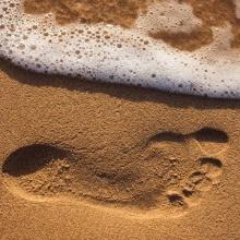 12.- One step