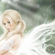 Fairies Dwell Here