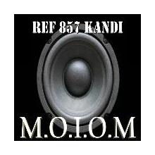 REF 955 AFFIX (BRUTAL LOUDNES MIX)