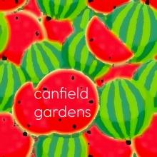 Canfield Gardens