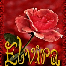 Elvira Una Mujer de los Pies a la Cabeza