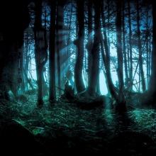 Voces en el Bosque (piano solo)