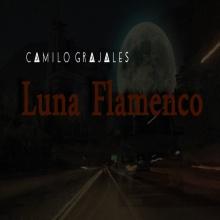 Luna Flamenco