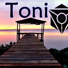 Bang my Head-Toni & Sia ft David Guetta