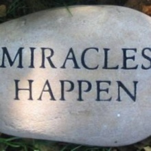 A Little Miracle II