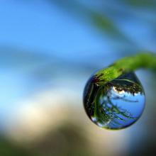 M5-Droplet