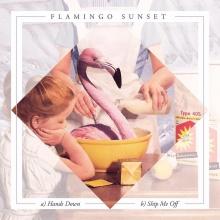 Flamingo Sunset - Hands Down