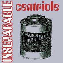 Inseparable (Centriole remix)
