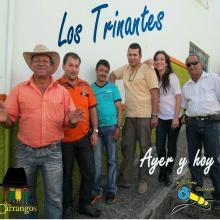 Las mujeres de hoy, Los Trinantes - MICRÓFONO ERRANTE vol 3