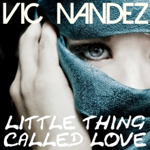 Vic Nandez - Little Thing Called Love