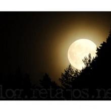 Luna tucumana