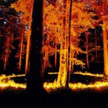 Firelight (instrumental) - Slavi Boykov