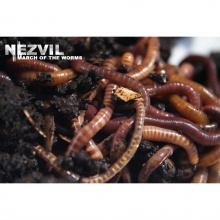 Nezvil -(El Rio) March Of The Worms