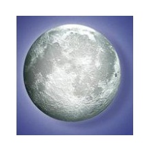 Melody Moon