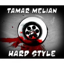 Hard Style - Dj Vinilo