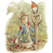 El conejo y el colibrí