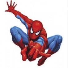 El Hombre Araña de Pablo Sendin