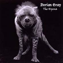 Boadm - The hyena