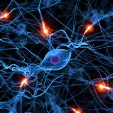 Matanza Neuronal