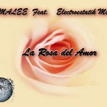 la rosa del amor- ELECTROESTATIK feat malee. smooth records