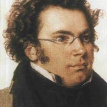 Schubert Quartet No1. Andante-Presto