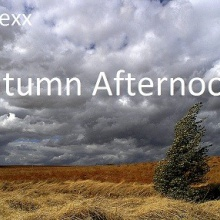 Autumn Afternoon (2003)