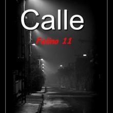 Felino 11 - Calle