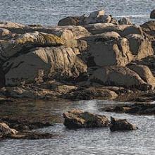 Salga's Rocks (Cons da Salga)
