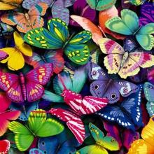 """""""Butterflies"""" por José Truchado"""
