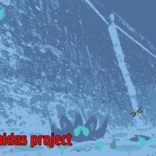 Pirámide Andrógena