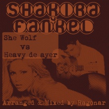 She Wolf vs Heavy De Ayer (Shakira vs Fankel)