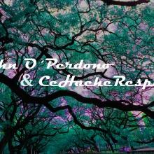 John'O Perdono y Cehache Respira - Tiembla (inst)