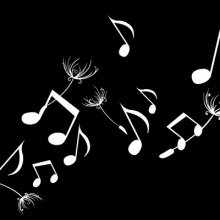 MusicBox_222