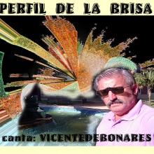PERFIL DE LA BRISA