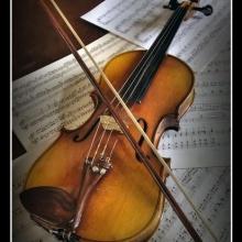 Música Aérea, (cuarteto de cuerdas)