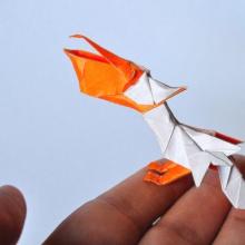 Pelícano de papel - Audición para Berklee