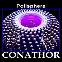 Polisphere